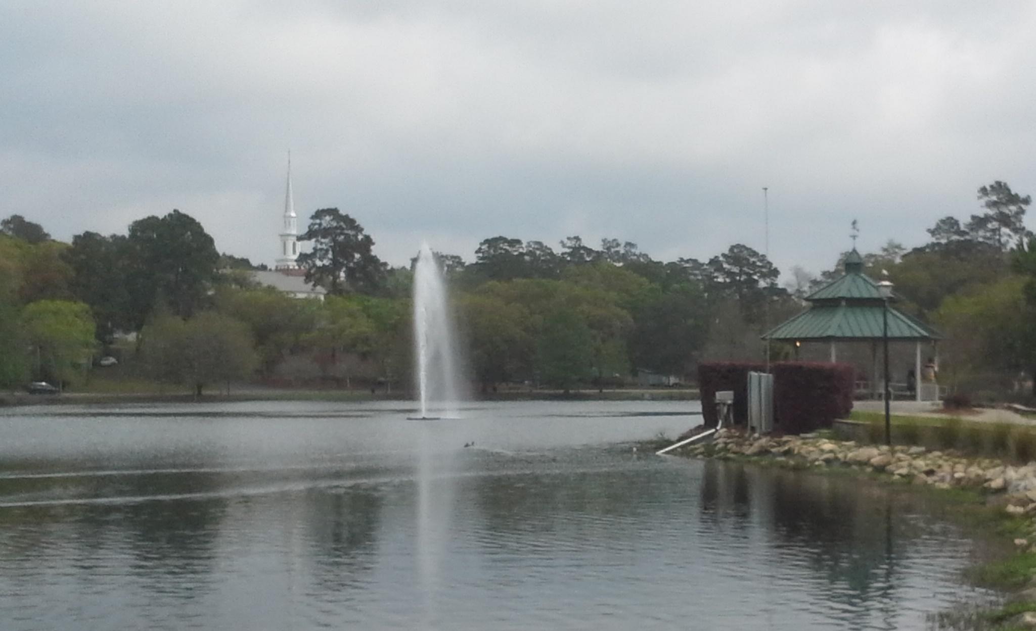 Lake Ella Fountain Water Gallery Llc