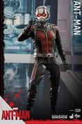 Hot Toys - Marvel - Ant-man