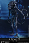 Hot Toys - Alien Warrior