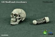 COO - Simulation Skull