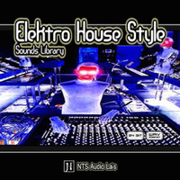 Elektro House Style