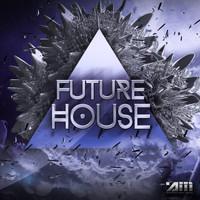 Audio Masters: Future House