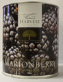 Vintners Harvest Marionberry Wine Base 96 oz