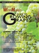 Guide to Growing Grapes