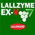 Lallzyme-EX-V 2 g
