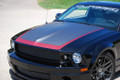 Mustang Stallion Stamped Aluminum Hood (2005-09)