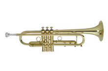 P. Mauriat Professional Bb Trumpet - PMT-71 Series - (Various Options)