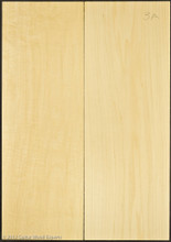 3A 2 Piece Basswood Body