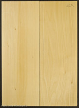 2A 2 Piece Basswood Body