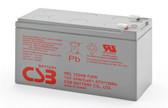 CSB HRL1234 F2FR Battery - 12V 9.0Ah 34W/CellSealed Rechargeable, Replacement Batteries for HR 1234W, HR 1234W F2, HR 1234WF2, HR1234W, HR1234W F2, HR1234WF2