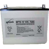 Genesis Yuasa NP75-12FR Battery - 12V 77.5Ah Sealed Rechargeable, Replacement Batteries for DM80-12, NP75-12, NP75-12FR