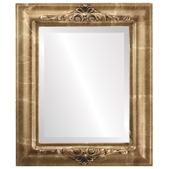 ... Mirrors Rectangle Framed Mirror #451 Winchester Champagne Gold Finish