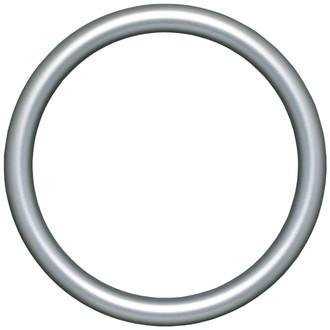 Pasadena Round Frame # 250 - Silver Shade