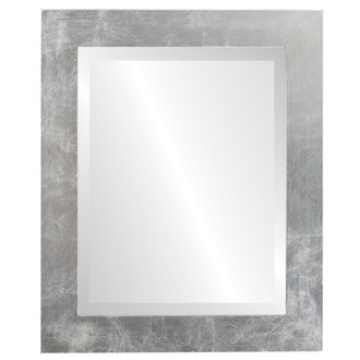 Cafe Beveled Rectangle Mirror Frame in Silver Leaf with Brown Antique