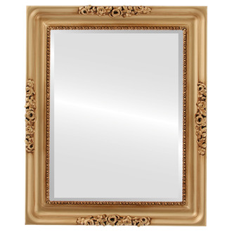 Versailles Beveled Rectangle Mirror Frame in Gold Paint