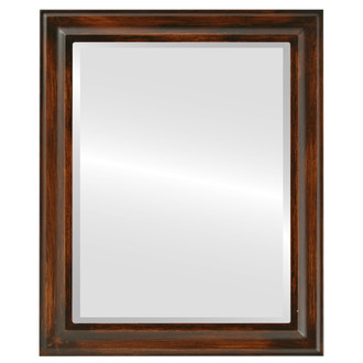 Messina Beveled Rectangle Mirror Frame in Mocha