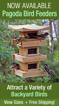Pagoda Bird Feeders - Attract a variety of backyard birds!
