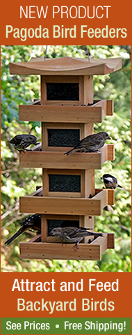 New product! Pagoda Bird Feeders. Attract a variety of backyard birds.