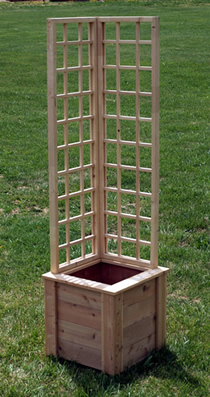 L-shaped trellis and planter box