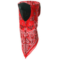 Neodanna Mask - Red Paisley - Front