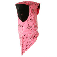 Neodanna Mask - Pink Paisley - Front