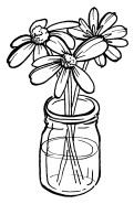Jar Full of Daisies