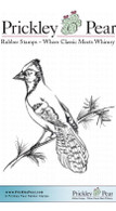 Sketched Blue Jay - Red Rubber Stamp