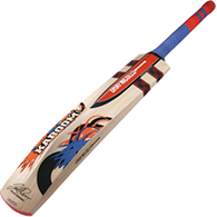 2014 Gray-Nicolls Kaboom Power Cricket Bat.