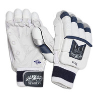 Newbery Test Batting Gloves