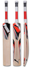 Puma EvoPower Kashmir Willow Cricket Bat