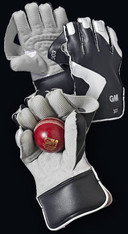 GM 303 Wicket Keeping Gloves and 6 Cricket Tennis Balls