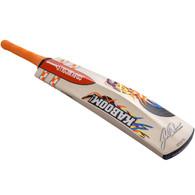 2017 Gray-Nicolls Kaboom David Warner 31 Cricket Bat.