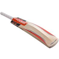 2017 Gray-Nicolls Predator3 Cricket Bat.