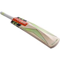 2017 Gray-Nicolls Velocity XP1 Force Cricket Bat.