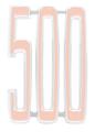 """Emblem Grille 68 Coronet """"500"""""""