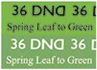 DND Mood Gel - Spring Leaf to Green MC36