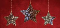 Aboriginal Star 2017