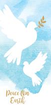Peace Dove 2017