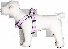 Sku 193 Pink Chevron harness