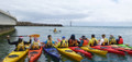 Australian Canoeing (AC) Flatwater Guide / Instructor Award (Kayaks or Canoes) Course Intake