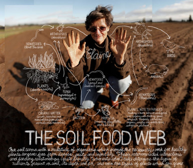Soil Foodweb  by Dr. Elaine Ingham