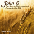 "John 6: The Second Most Important Passage in the Bible     (*) Also available in MP3  by Steve Wood  This CD is the most effective apologetics tool we offer in bringing Protestants into the very heart of Catholicism. Unlike most Catholic apologetics materials, this CD is designed especially for Protestants. We have been astonished to see how God has used this message to make converts. We were speechless when we received the following testimony about the John 6 message:   ""One summer I worked with five hard-core Protestants. Since they knew I was a seminarian, they hammered me with Protestant arguments against the Faith. I finally asked them to give me just one hour to explain Catholicism to them. I transcribed Steve's message on John 6. The result of that one-hour conversation was five conversions out of five!""  Fr. Phil Wolfe   For your Protestant friends, the most loved and important passage in the Bible is John 3:16. In this message they'll learn that second only to John 3:16 is Jesus' Bread of Life teaching in John 6. This magnificent chapter describes:   •         One of the greatest miracles in the entire Bible  •         Why the book of Exodus is crucial for a true understanding of John 6  •         The ultimate dividing line between faith and unbelief  •         What Jesus really meant when he called himself the Bread of Life  •         The ultimate source of a fruitful Christian life  •         The most profound way to have a deeply personal relationship with Jesus"