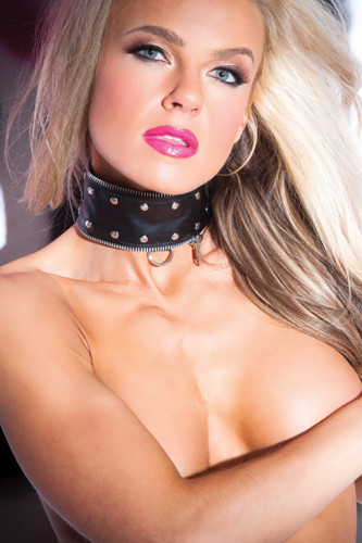 Allure Lingerie Faux Leather Zip and Rivet Collar