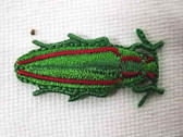 Rust Green Long Beetle Embroidered Iron On Applique Patch