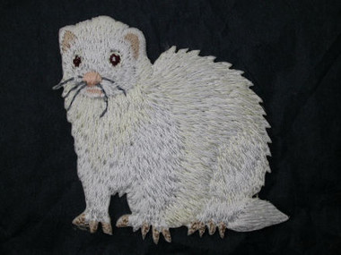 Albino Ruby Eyed Ferret Iron On Applique Patch