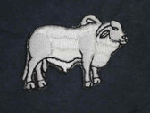 Brahman Bull Iron On Embroidered Applique Patch