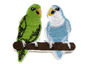 Green Blue Budgies Parakeets on Perch Embroidered Iron On Applique Patch 2.75 In