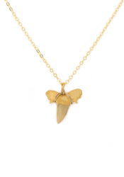Moroccan Shark Tooth Necklace
