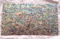 Abalone Laminate 24mmX14mm