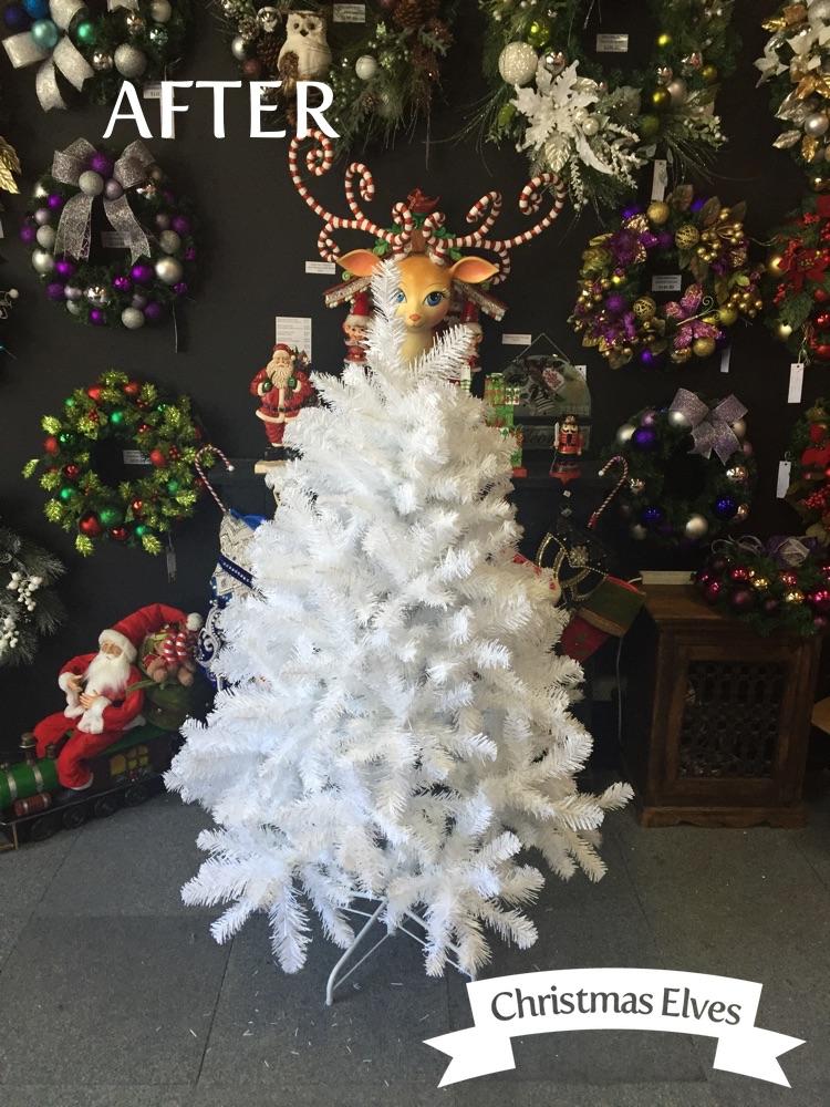 Christmas Elves University